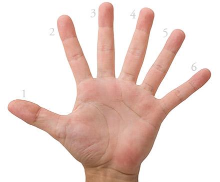 Six Fingers