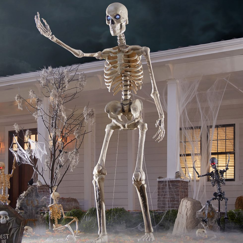 12 ft. tall skeleton reproduction